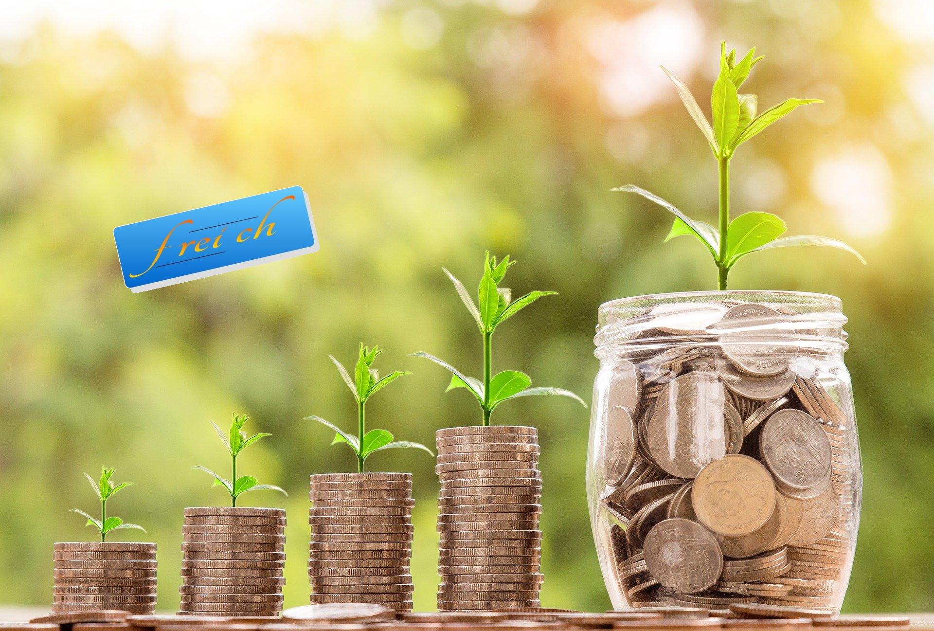 frei und reich - mit EFT-kreativ zu finanzieller Freiheit