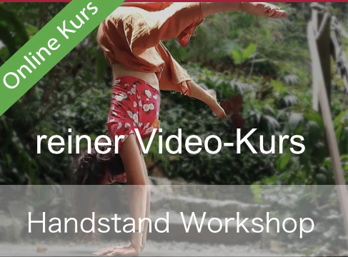 Handstand-Video Kurs (OHNE Live-Sessions)